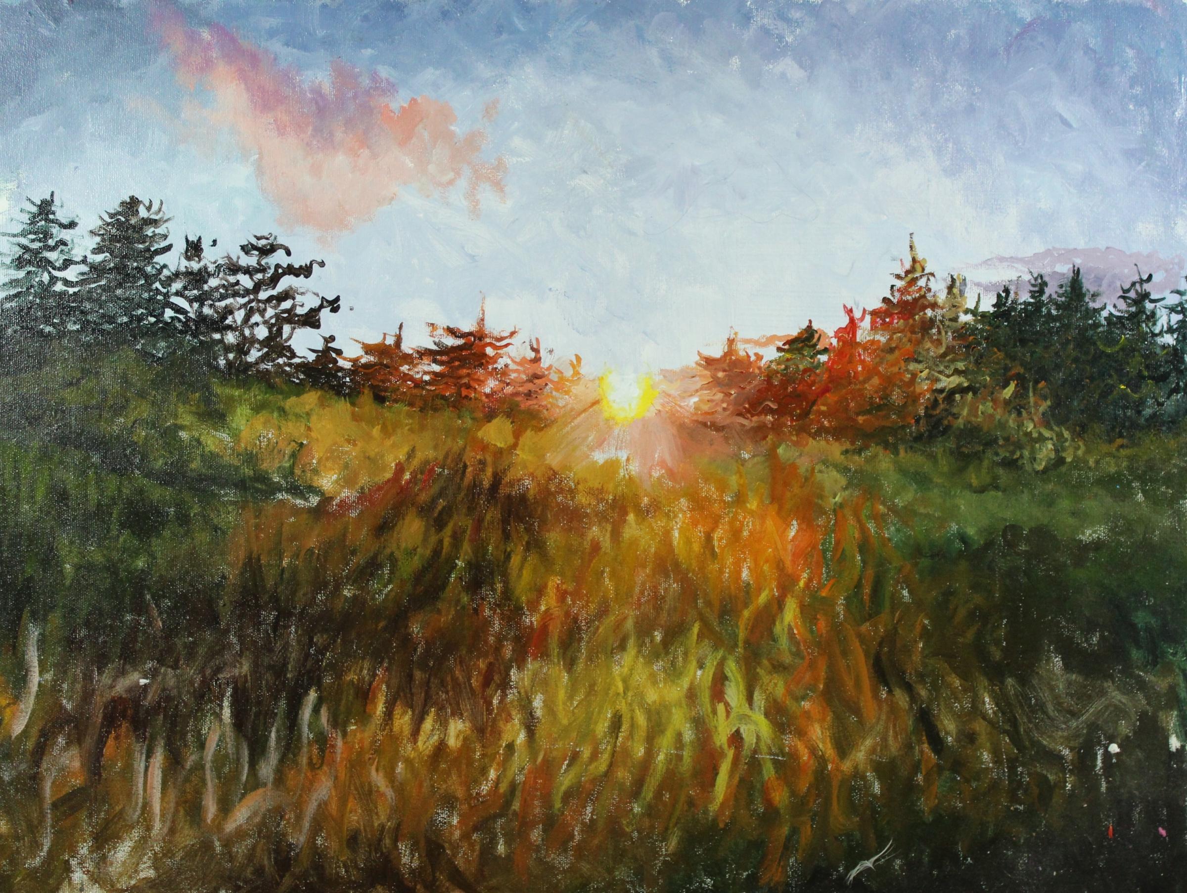 Acrylic Sunset by Danielle Nothmann