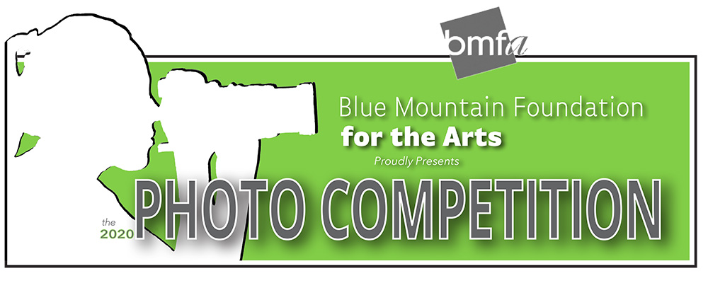 Photo Competition Logo