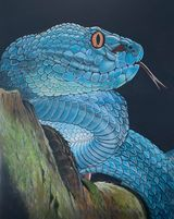 Slither by Norman Robert Catchpole