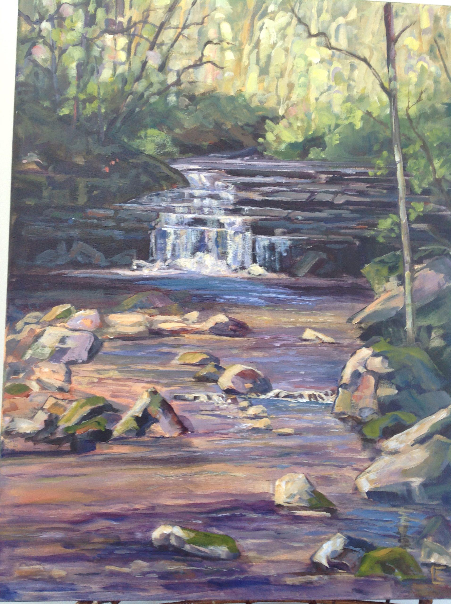 Pretty River Tributary by Carolyn Corner