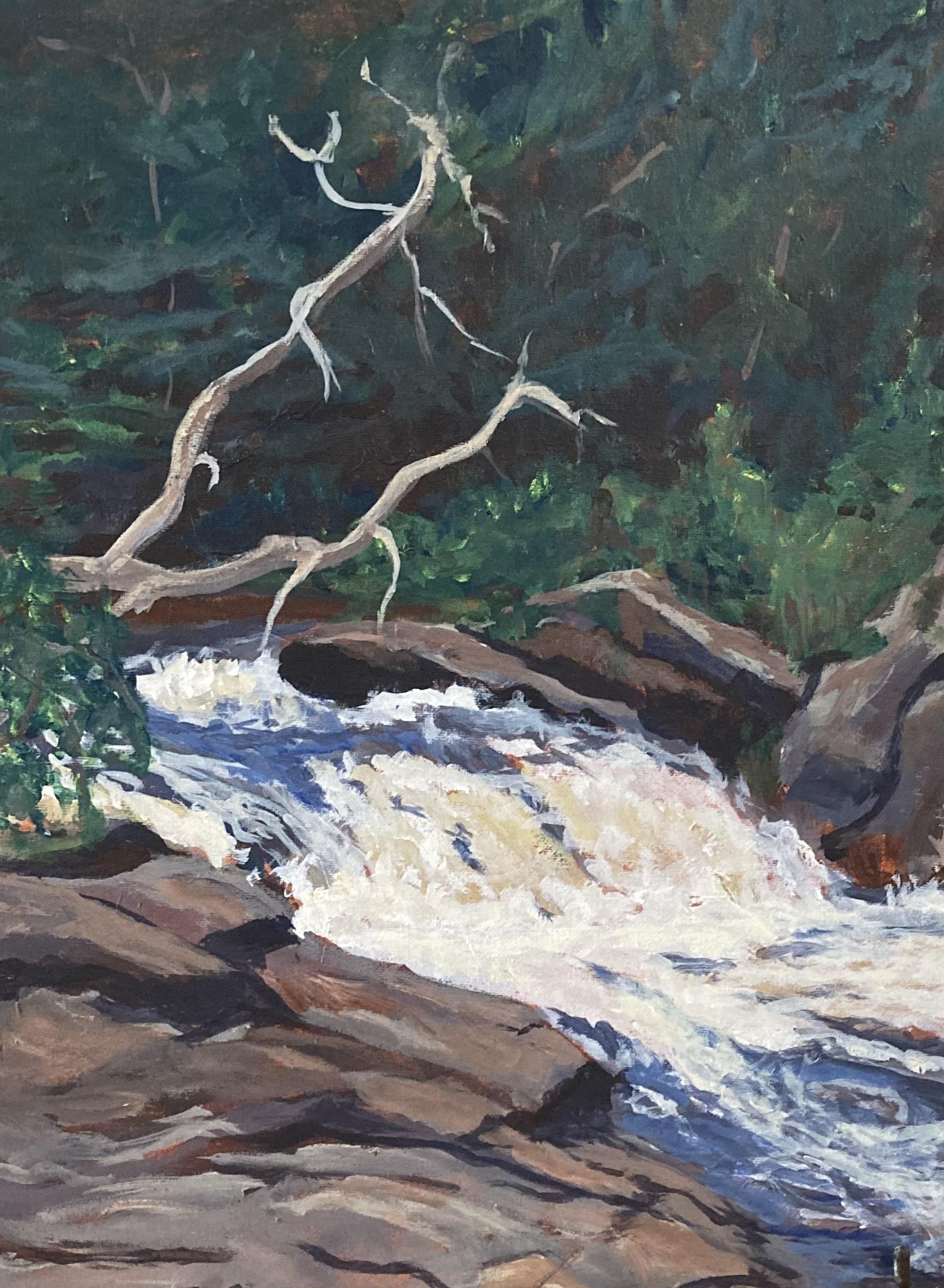 Driftwood Falls by Susan Mogelin