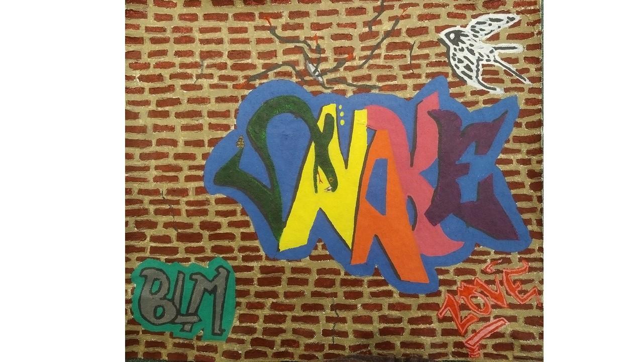 Graffiti Snake by Jake Curtis